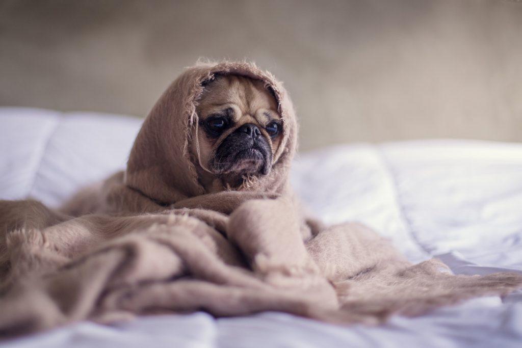 寝起き 吐き気